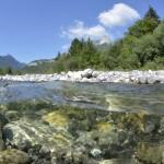 Rivière le Chéran, partie renaturée au Chatelard  – Massif de